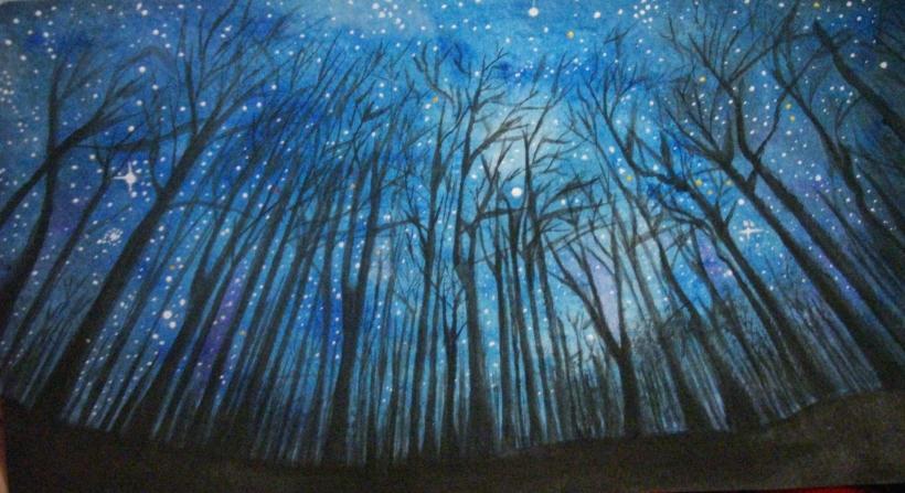 noche estrellada entre los árboles de un bosque