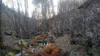 5 Galicia